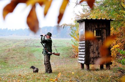Jäger schaut mit Fernglas über Feld